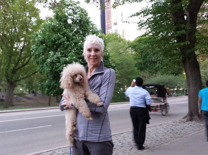Cincinnati Ballet artistic director and CEO Victoria Morgan's miniature apricot poodle Teddy Moe traveled with the company for Cincy in NYC. Here are photos of his New York adventures.