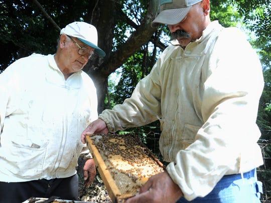 Edd Buchanan, left, and his son Eddy examine a hive
