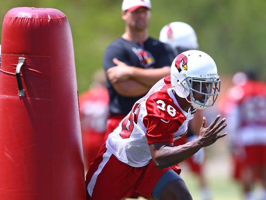 Arizona Cardinals cornerback Ronald Zamort (38) during