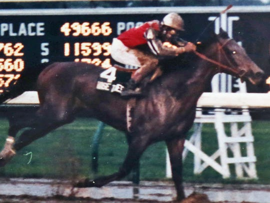 Wise Times, with Chris DeCarlo riding, winning  the $300,000 Grade 1 Haskell Invitational on July 26, 1986. Personal Flag (8) finished second, with Danzig Connection, on the rail, finishing third.