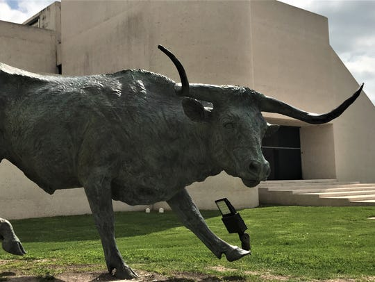 The bronze Longhorn statue in front of the Art Museum