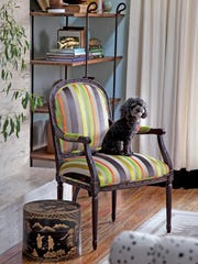 """Reupholstering furniture can be done with a few simple tools, patience and time, according to Amanda Brown, author of """"Spruce: A Step-by-step Guide to Upholstery and Design"""" (Storey, 2013), which takes readers through six projects including this Louis XVI chair reupholstered in a neon velvet stripe by Designers Guild."""