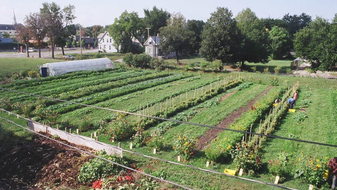 Earthworks Urban Farm on Detroit's east side, one of the locations whose soil will be tested.