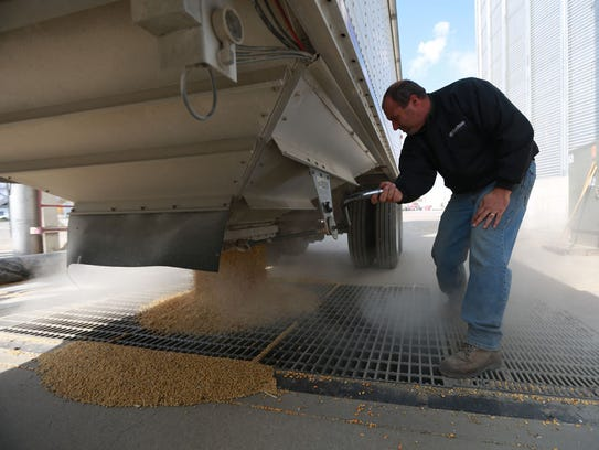 Lonnie DeZwart of Two Rivers Cooperative in Monroe unloads soybeans from a semi trailer in 2014.