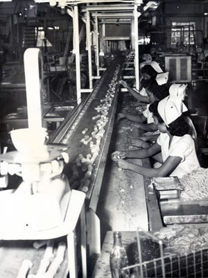 Aug. 24, 1952: White uniformed girls take tortillas from a conveyor belt in the Ashley kitchen and deftly roll prepared cheese into them to make enchiladas. The rolled enchiladas move to cookers on the upper belt.