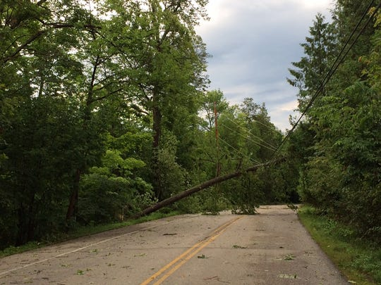 Horseshoe Bay Road was blocked because of this tree in power lines.