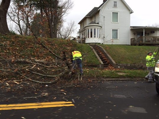 Traffic was stalled temporarily on Park Avenue East after a tree crashed into the road Thursday.
