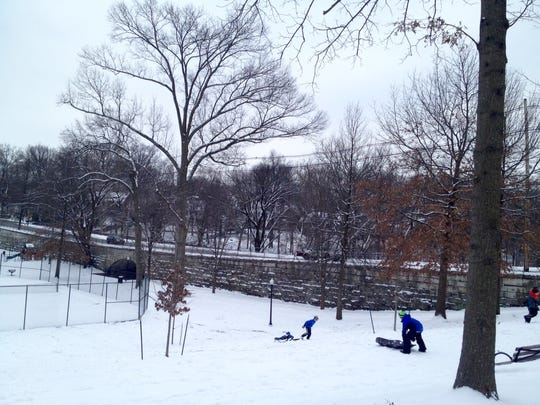 The historic Tyler Park Bridge built in 1904 provides a backdrop for sledding recently at Tyler Park t Castlewood and Baxter avenues.
