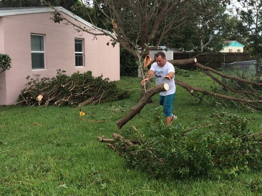 Vero Beach resident Michael Banks found a tree in his