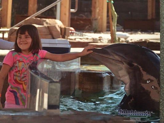 Olivia and Dolphin