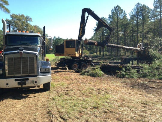 Timber production and processing generates an annual economic impact in Alabama of $21.4 billion.