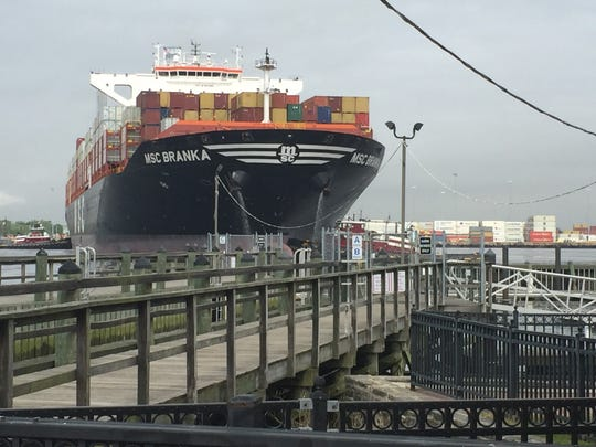 The MSC Branka, a container ship, looms over Gloucester City's marina on the Delaware River.