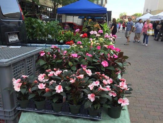 Lafayette's Farmer's Market  is open Saturdays from