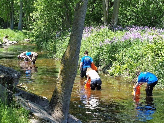 Woodland Dunes staff and volunteers look for freshwater