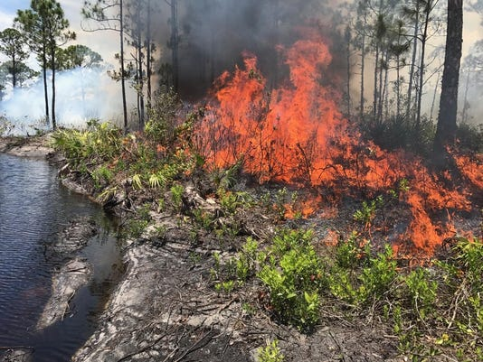 Two brush fires contained Thursday