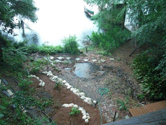 Filtering pond on Lake Talquin.