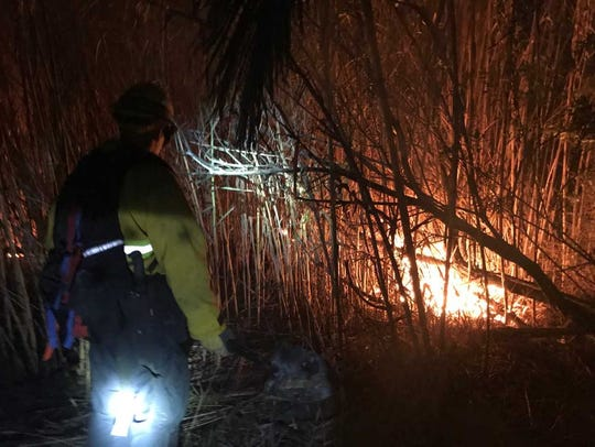 Crews put out a small fire in the Ventura River bottom