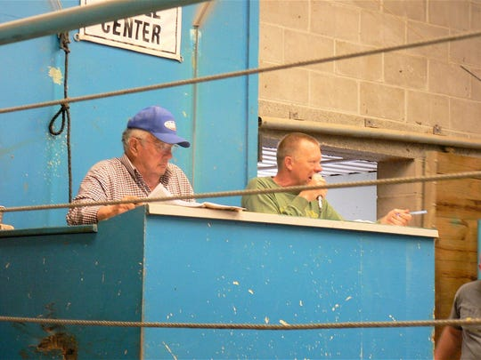 Mike Stade (right) calls the auction alongside his dad Bill who announced the cattle records last Wednesday.