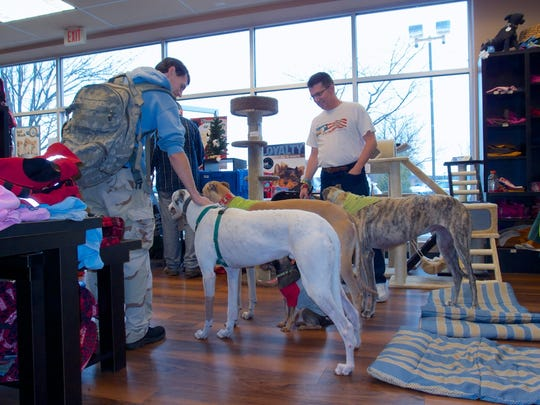 New Jersey Greyhound Adoption Program (NJGAP) will host a Meet & Greet at PetValu in the Flemington Circle Shopping Center, 276 Rts 202/31, Flemington, from 1 to4 p.m.on Saturday, July 21.