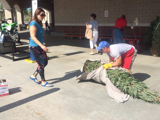 Christmas tree vendors busy in Lee