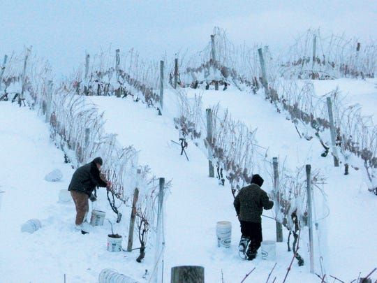 A handful of Indiana wineries create ice wine, which is also produced in the wine regions of Northern Michigan, New York and Ontario.