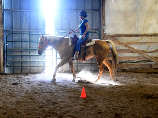 636411056436323841-07222016-horse-riding-therapy-c.jpg