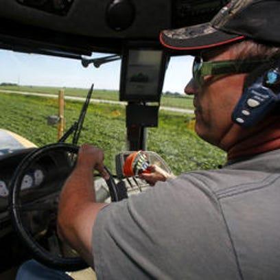 Danny Dammann drives through a soybean field while