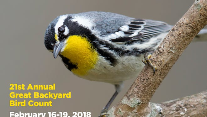 The bird count takes place Feb.16-19.