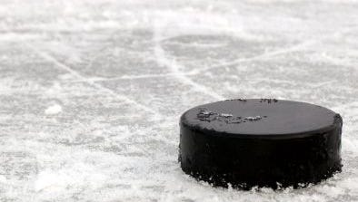 Pearl River forward Max McGee reached the 100-point milestone in a 5-2 win over New Rochelle on Sunday.