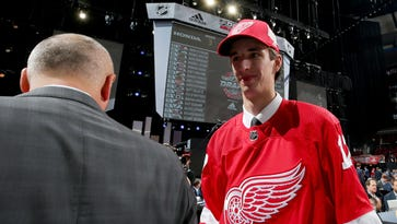 Red Wings' 2017 draft class breakdown