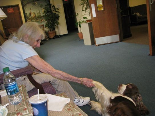 Connor, a winner of many accolades, and therapy dog,