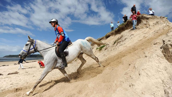 Riders take part in the 160 km endurance competition of the 2014 FEI World Equestrian Games near the Mont-Saint-Michel.