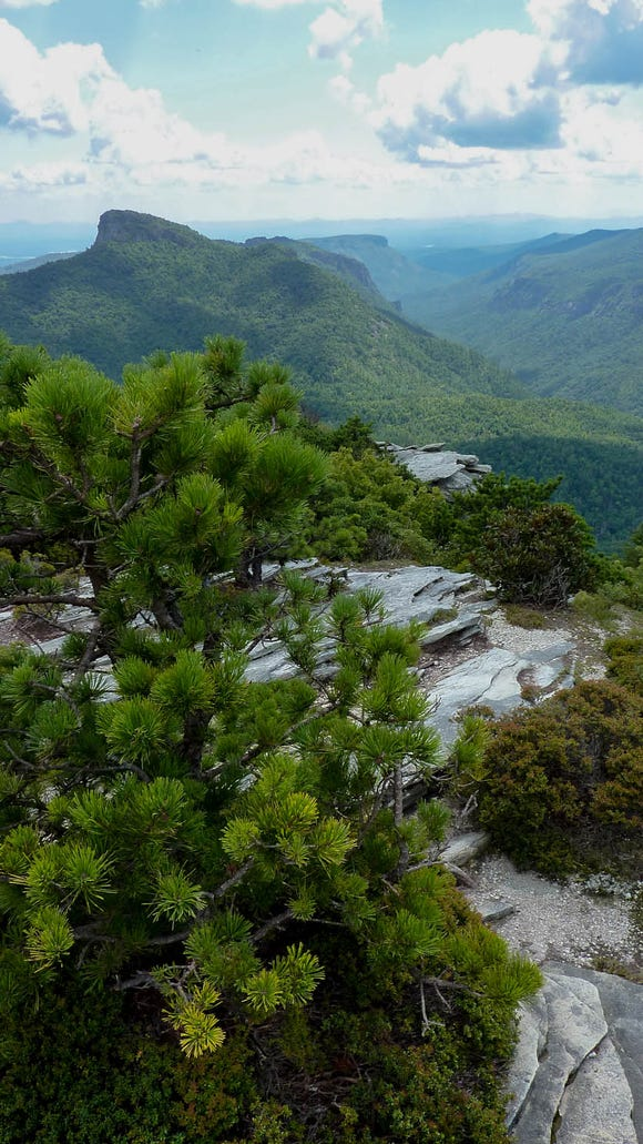 Linville Gorge Wilderness in North Carolina.
