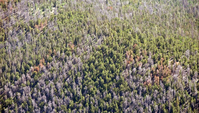 An aerial photograph shows forested land in the Sangre de Cristo Range.