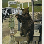 "Sally the Bear at Point Lookout. Postcard image courtesy of Mary and Joseph Standaert, authors of ""Swannanoa Valley."