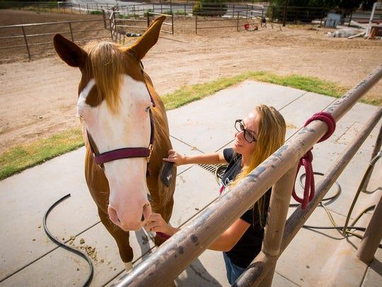 Member of the NMSU equestrian team Pearl Aebly grooms