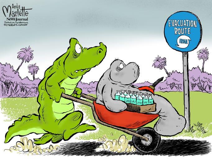 Image result for hurricane irma cartoons