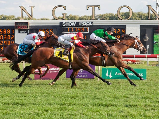 Arlington International Racecourse hosted five stakes races on Saturday.