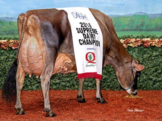 636148215747110025-Dairy-Champ.jpg