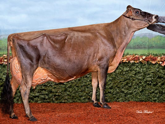 WSF 0707 Jersey EX 96 1