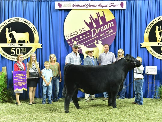 Grand champion bred and owned steer