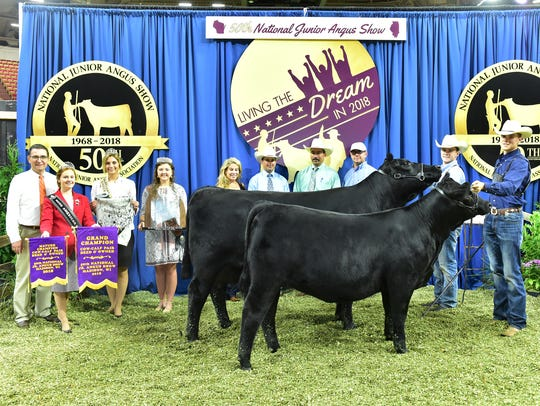 Grand champion bred and owned cow and calf pair