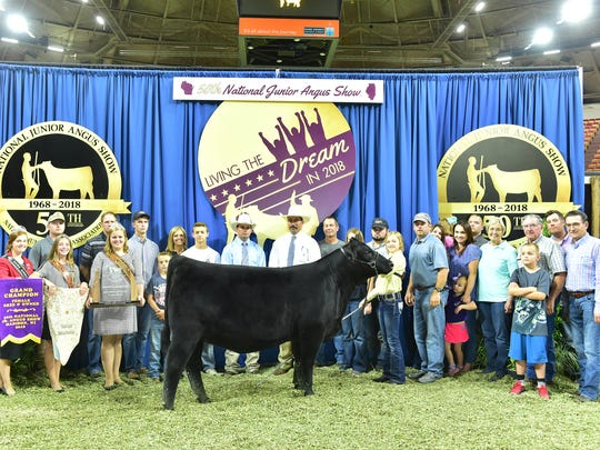 Grand champion bred and owned female