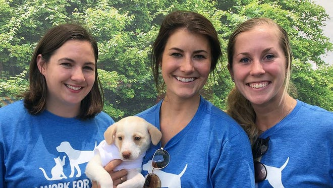 Employees at Mars Petcare make pets and pet-lovers top priority.