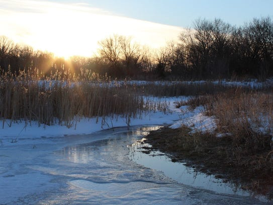 A river-bottom floodplain wetland in December.
