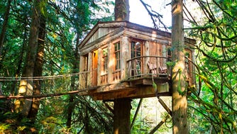 Treehouse builders from around the world come to admire and study the structures at Treehouse Point in Issaquah, Wash.