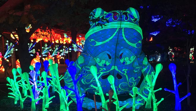 A photo showing a lantern of a frog that was featured at the first ever Dragon Lights Festival in Reno on July 26, 2018.