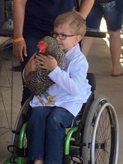 Braden Pederson, 10, likes to raise chickens, as well as show sheep. He is pictured in his wheelchair he used before getting a track wheelchair.