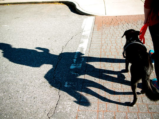 A woman walks her service dog, Baringer, across Battle Square in downtown Asheville.