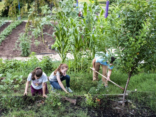 From left, Abby Brewer, 15, Kathleen Kahl, 13, and Joseph Johnson, 17, work in the garden at Haywood Street Congregation in July. The youths are part of Carolina Cross Connection, a nonprofit ministry that brings people from all over to do urban outreach in Asheville.